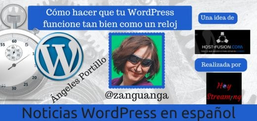 Optimizar WordPress con Angeles Portillo
